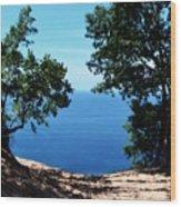 Top Of The Dune At Sleeping Bear Ll Wood Print
