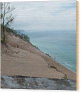 Top Of The Dune Wood Print