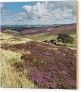 Top Withins On Haworth Moor Wood Print