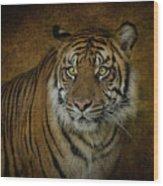 Topaz Tiger  Wood Print