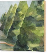 Topiary Parc St Cloud Watercolor Painting Of France Wood Print