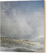 Topic Of Duality Winter-summer Wood Print
