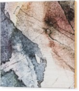 Topographical 2 Wood Print