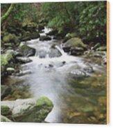 Torc Waterfall Wood Print