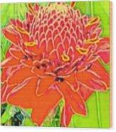 Torch Ginger Aloha Wood Print