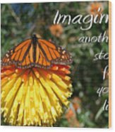 Torch Lily And Monarch Wood Print