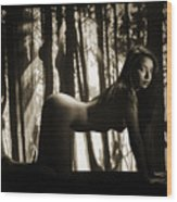 Toriwaits Nude Fine Art Print Photograph In Black And White 5098 Wood Print