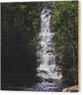 Toron Falls Wood Print