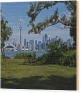 Toronto  Wood Print