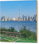 Toronto Skyline From Park Wood Print