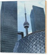 Toronto Soaring Wood Print