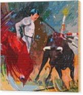 Toroscape 05 Wood Print