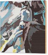 Toroscape 31 Wood Print