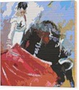 Toroscape 36 Wood Print