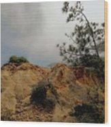 Torrey Pines-2 Wood Print