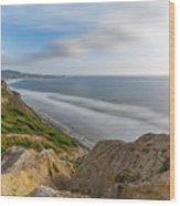 Torrey Pines, San Diego Beach, California Wood Print