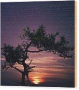 Torrey Pines Twinkle Twinkle Wood Print