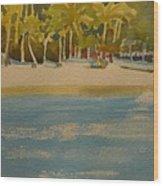 Tortuga Island Costa Rica Wood Print