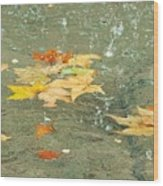 Tossed Leaves Wood Print by JAMART Photography