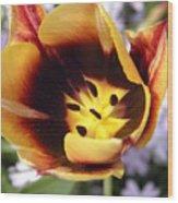 Totally Tulip Wood Print