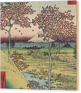 Toto Meguro Yuhhigaoka - Sunset Hill Meguro In The Eastern Capitol Wood Print
