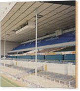 Tottenham - White Hart Lane - East Stand 3 - April 1991 Wood Print
