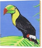 Toucan Bird Wood Print