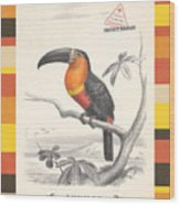Toucan Bird Responsible Travel Art Wood Print