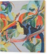 Toucan Wood Print