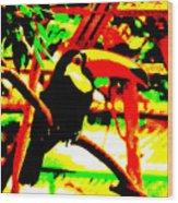 Toucan Tourcanna Wood Print