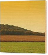 Touched By Golden Light - Battlefield Orchards Wood Print