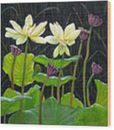 Touching Lotus Blooms Wood Print