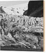 tourists at ash covered Skaftafell glacier and end moraine Vatnajokull national park in Iceland Wood Print