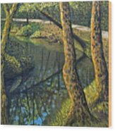 Tow Path Wood Print by Don Perino