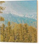 Towards Abshaar Northern Pakistan Near Nathiagali Wood Print