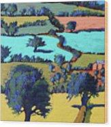 Towards Ledbury II Wood Print