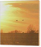 Towards Sunset Wood Print