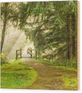 Towards The Light 0020 Wood Print