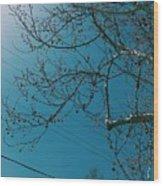 Towards The Light Wood Print