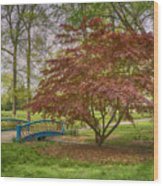 Tower Grove Arched Bridge And Maple Tree Dsc01828 Wood Print