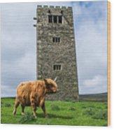 Tower Of Joy Wood Print