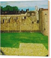 Tower Of London  Study  Wood Print