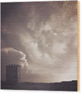 Tower Of Strength Wood Print