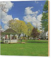 Town Common In Spring Brookfield Massachusetts Wood Print