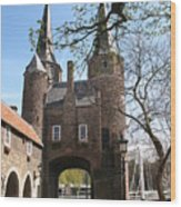 Town Gate - Delft Wood Print
