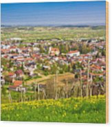 Town Of Ivanec Aerial Springtime View Wood Print