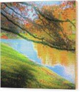 Town Pond Wood Print