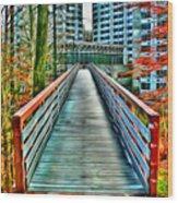 Towson University Walkway Wood Print