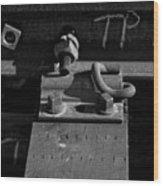 tp II Wood Print