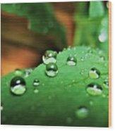 Traces Of Rain Wood Print